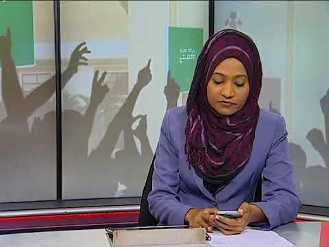 Raees Yameen ge Laadheenee Vaahakafulhu