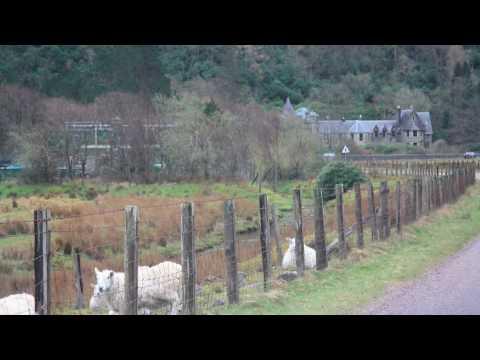 Moidart, Scotland - Castle of Tioram