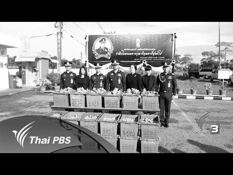 ทุกทิศทั่วไทย : ประเด็นข่าว (3 พ.ย. 59)