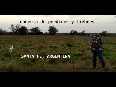 2019 Julio Caceria Perdices Liebres Argentina