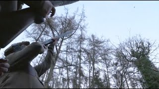 The Shooting Show - spectacular game shooting at Chargot Estate