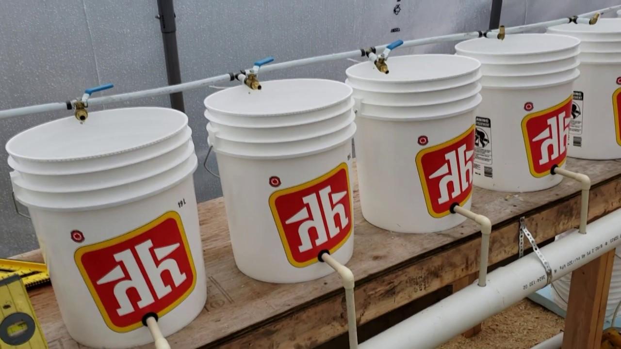 diy dutch bucket aquaponics step by step [ 1280 x 720 Pixel ]