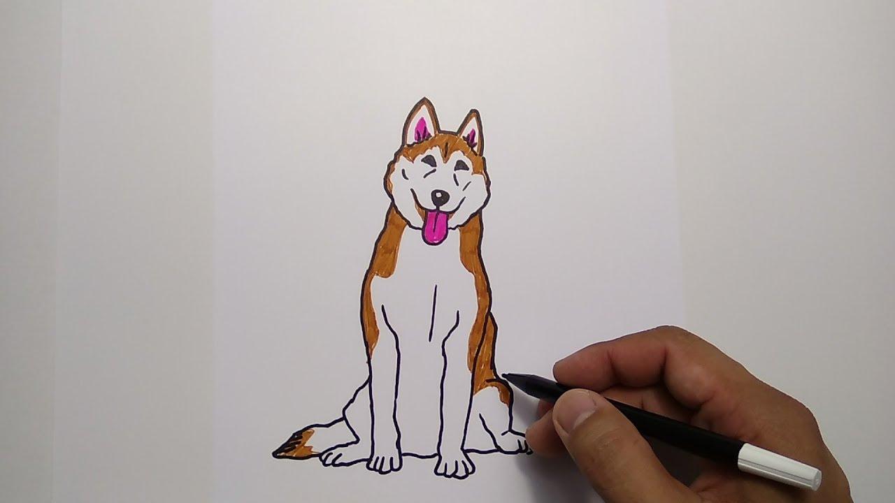 How To Draw Dog Cara Menggambar Anjing