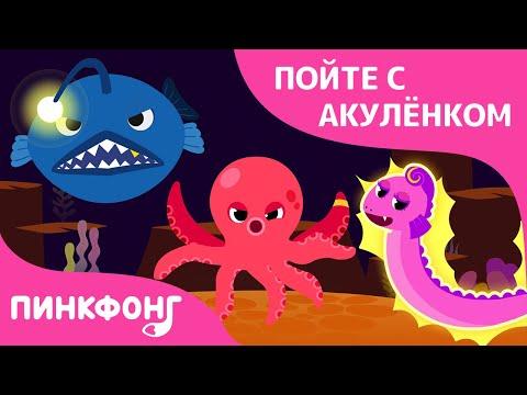 Опасные морские друзья | Пойте с Акулёнком | Пинкфонг Песни для Детей