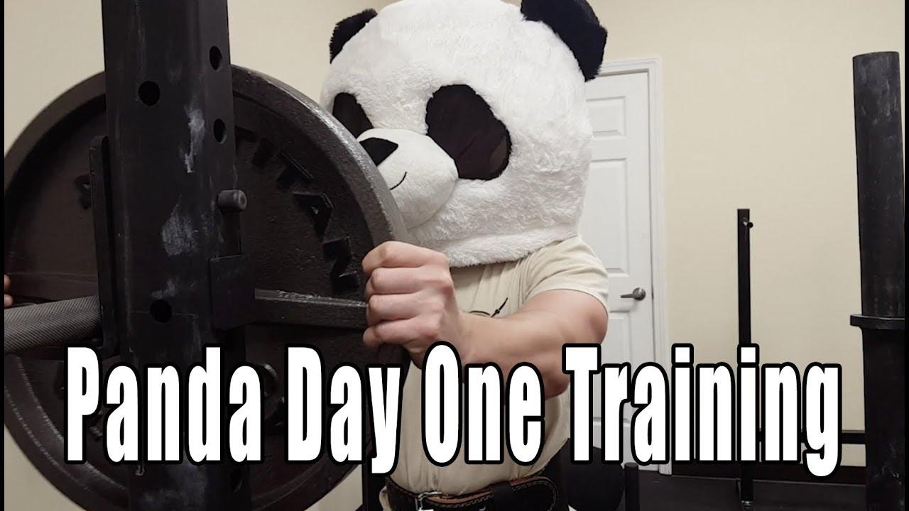Panda Lifting Weights At Barbell Habits Youtube