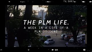 the PLM life | intra vlog
