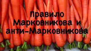 """Органическая химия. Правило Марковникова и """"анти-Марковникова"""""""