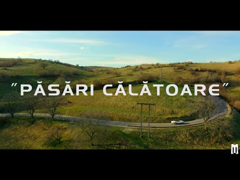 Marius Moga feat. Achi - Suntem Pasari Calatoare   Videoclip Oficial