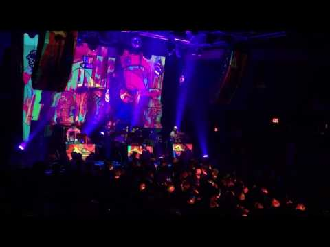 Animal Collective live at 9:30 Club