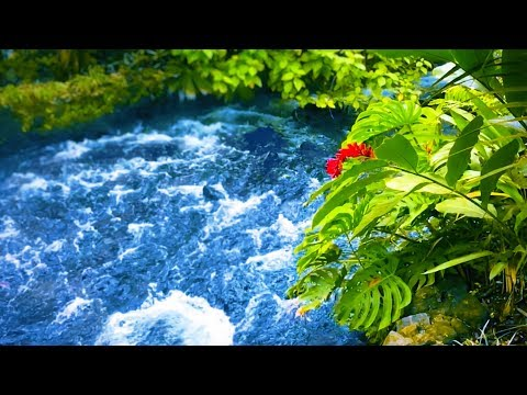 Sleep, Study or Focus with Water Sounds White Noise | Relaxing River 10 Hours
