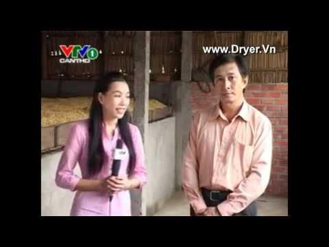 Công nghệ sấy lúa thay cho phơi
