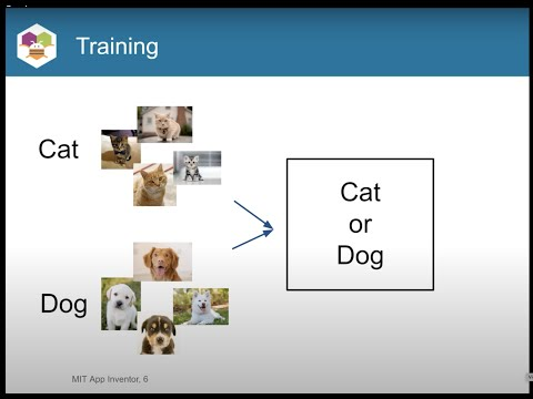 Introduction to Transfer Learning