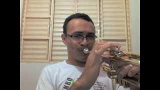 Como fazer uma surdina caseira para Trompete