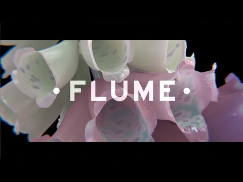 Flume  - Skin Album Mix