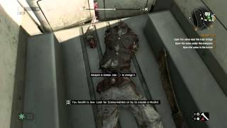 Dying Light - Trapped In Van Glitch