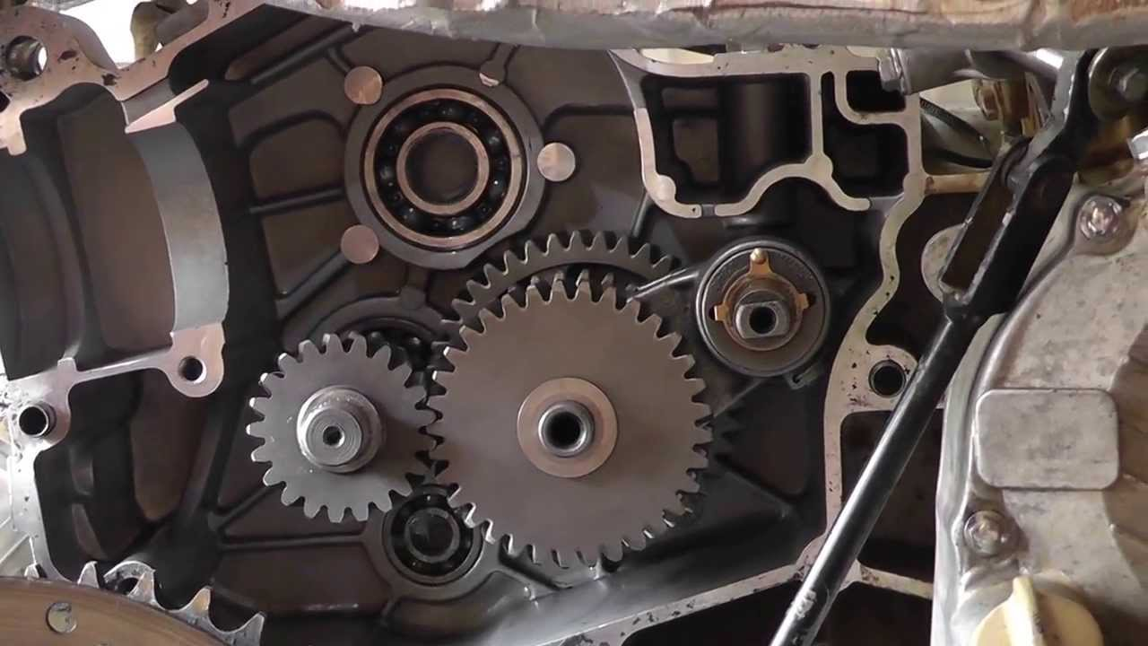 How To Fix A Cf Moto 250cc Hammerhead Gear Box Assembly Youtube Baja Dn 250 Wiring Diagram