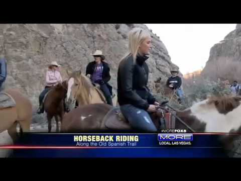 Fox 5 Horseback Riding from Wildwest Horseback Adventures