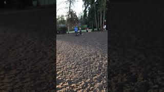 Nightmare at the dog park. German Shepherd attack's dogs.