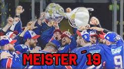 Adler Mannheim 2019: Deutscher Meister