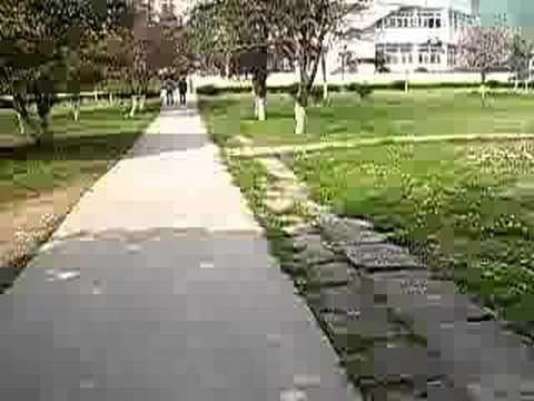 virtual walking tour my university campus part 2