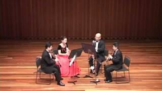 """Johann Strauss II  """"Unter Donner und Blitz""""   / Clarinet ensemble Sonorite"""