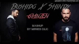 Bushido ft. Shindy - Glänzen Remix