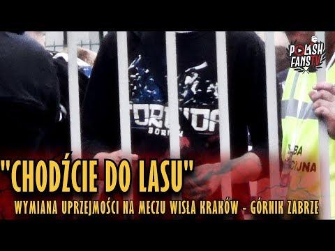 """""""CHODŹCIE DO LASU"""" - wymiana uprzejmości na meczu Wisła Kraków - Górnik Zabrze (25.08.2018 r.)"""
