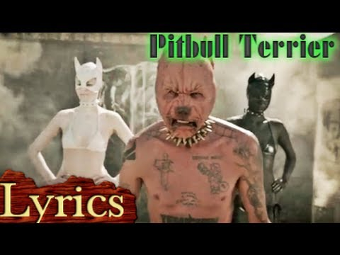 Pitbull Terrier  (Lyrics) - Die Antwoord   - LYRIC VIDEO - LYRICS
