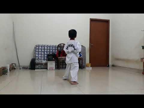 Taekwondo basic 1 and 2