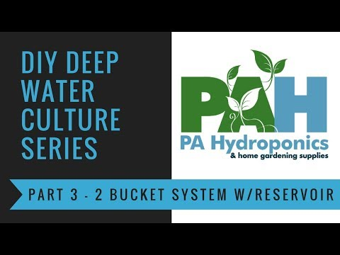 Easiest double bucket DWC with reservoir and water level indicator built from scratch!!