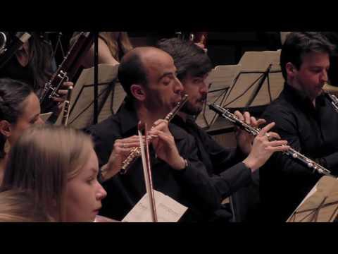 Brahms Symphonie 1 - Les Dissonances