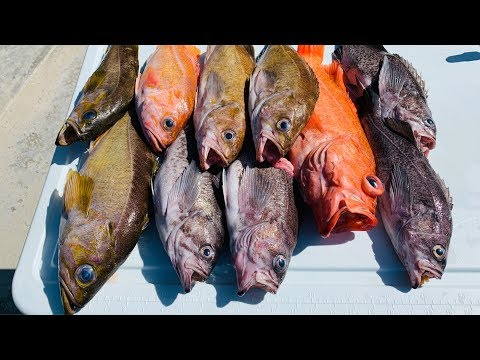 DEEP SEA DROPPING FOR ROCKFISH... Catch Clean Cook | Half Moon Bay California Ep.#20