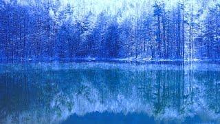 4K Japan 冬 御射鹿池 カラマツの霧氷&けあらし&ダイヤモンドダスト Mishaka Pond of winter  /  グノー アベマリア Gounod Ave Maria