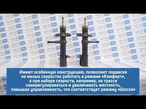 Передние стойки саморегулирующиеся Технологии Будущего | MotoRRing.ru