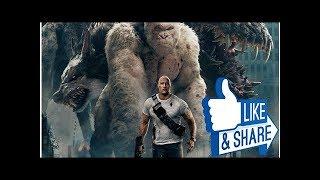 映画『ランペイジ 巨獣大乱闘』ホワイトゴリラのジョージ、初登場シーン到着!ロック様、動物や怪獣との共演秘話語る -galio movie