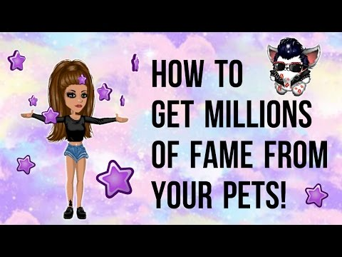 GET MILLIONS OF FAME FROM PETS