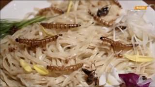 Мороженое с шелкопрядами и роллы с червями  что едят в Токио