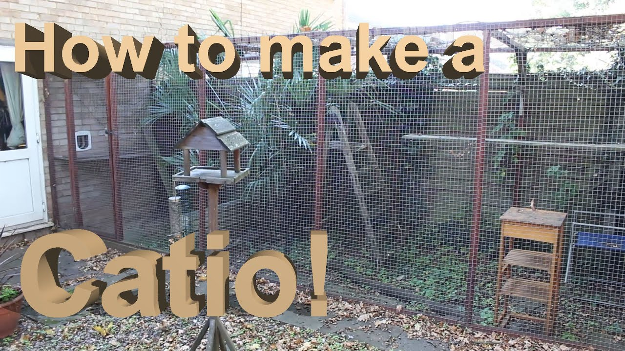 How To Build A Catio With Tips  Youtube
