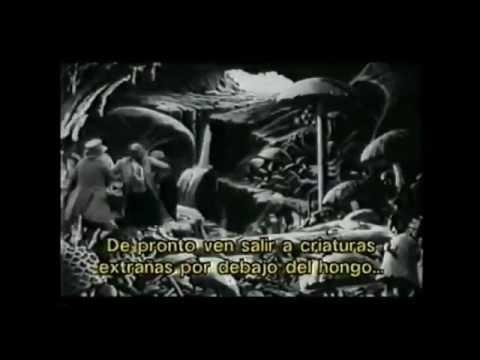 Las primeras películas, los inicios del cine.