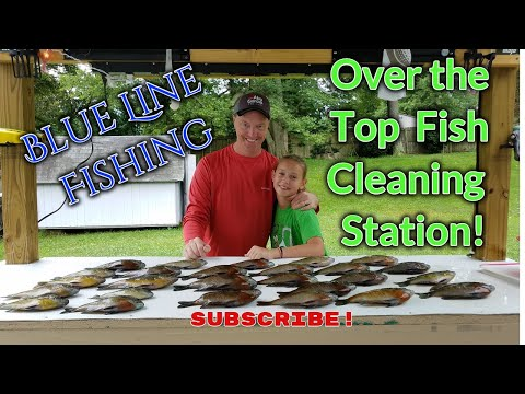 Fish Cleaning Station (DIY)