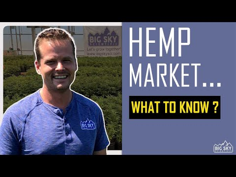What you need to know about market access when selling industrial hemp