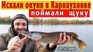 Искали окуня поймали щуку I Рыбалка в Карнауховке 31 10 2020