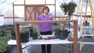 Gardening Tips : How To Build A Planter Box