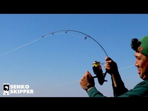 Testing Tiny Dock Demon Fishing Rod on BIG fish.