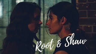 SHAW & ROOT × Surrender