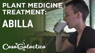 Abilla - Plant Medicine Treatment - Ayahuasca Retreats & Noya Rao Dietas | Casa Galactica