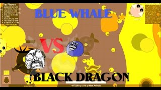 Video Mope.io // Blue whale killing a black dragon // New mope.io update download MP3, 3GP, MP4, WEBM, AVI, FLV Januari 2018