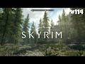 The Elder Scrolls V Skyrim Special Edition Прохождение 114 Сосновая застава mp3