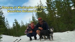 Camping in Washington Pąrt Two: Wenatchee National Forest