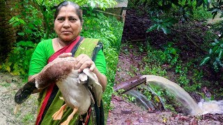 A Rainy Day in Village: Duck Curry and Traditional Khichuri Cooking Recipe by Village Food Life